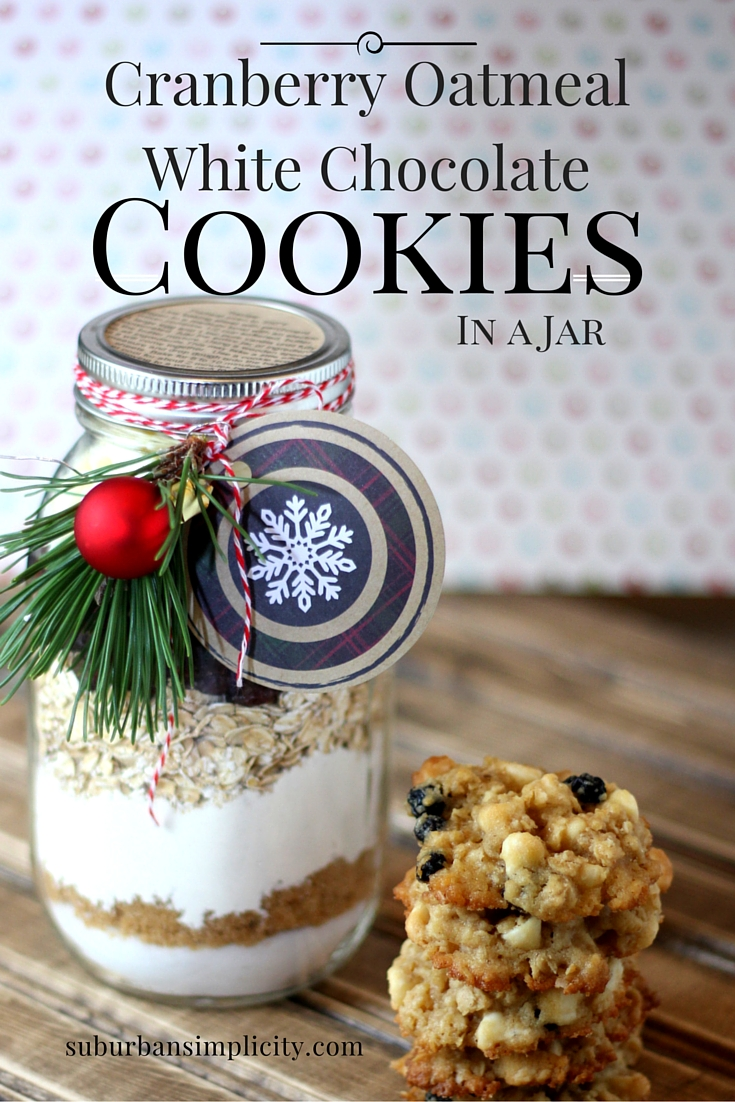 Cranberry White Chocolate Oatmeal Cookies In A Jar Mason