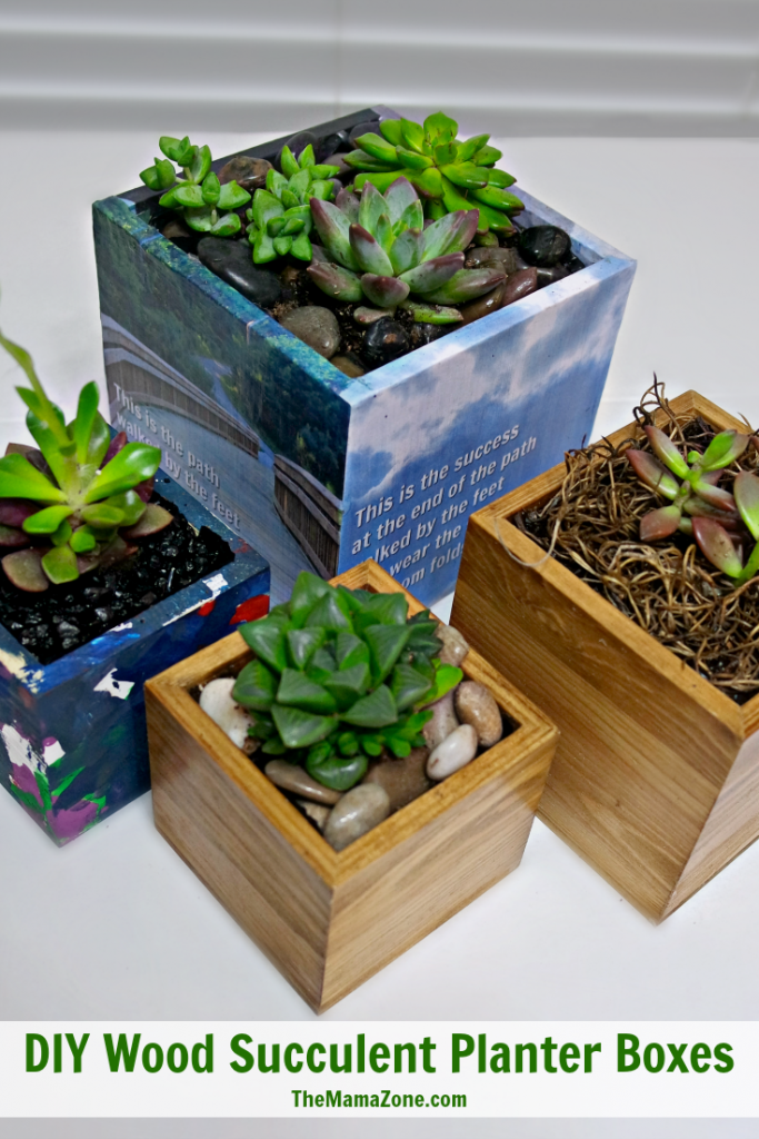 DIY-Wood-Succulent-Planter-Boxes