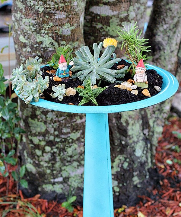 succulent-bird-bath-planter