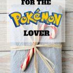 Gift Ideas For The Pokemon Lover