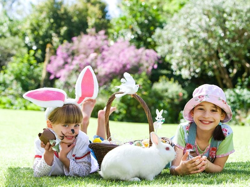 Looking for Easter Basket Ideas for Young Kids? Check out these cute and clever ideas to fill your kid's Easter baskets with something other than candy! They'll love them all.