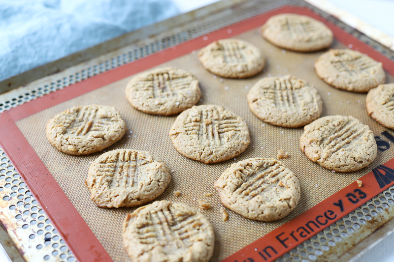 baked gf peanut butter cookies on cookie sheet