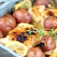 Baked lemon chicken in a blue baking dish with fresh thyme.