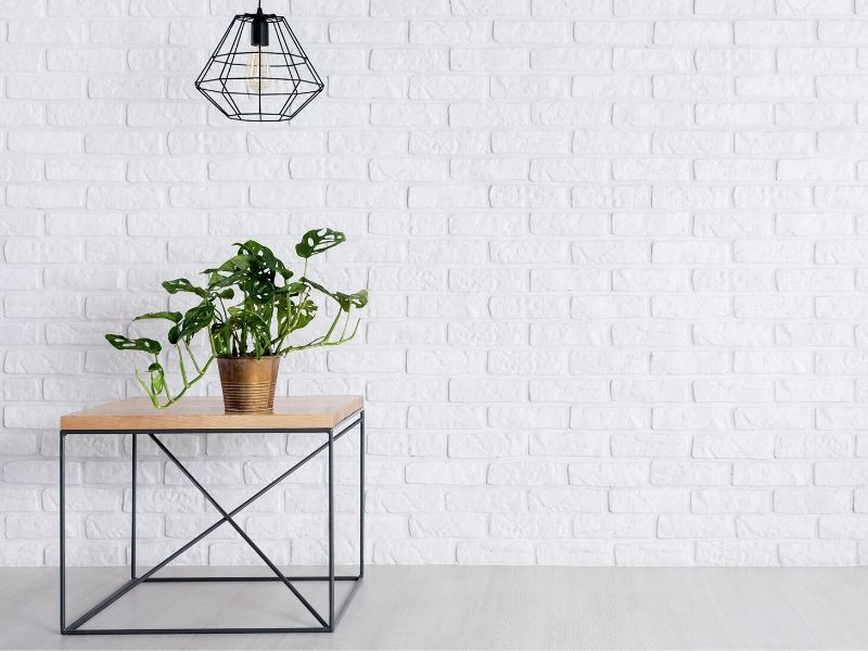 Table with plant on top