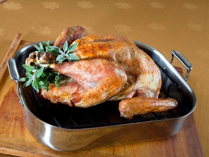 turkey in a roasting pan